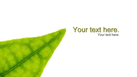 fill in: leaf texture in isolate background for fill in text