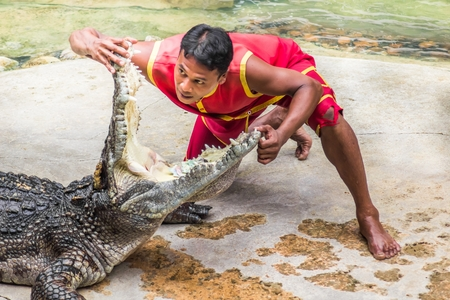Thailand, Samutprakan,June 11, 2017: Actors are putting their head into the crocodile mouth. At Samut Prakan Crocodile Farm and Zoo. Editorial
