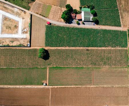 Aerial photo landscape of farming.