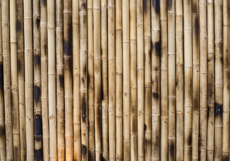 This is columns of bamboo making up a wall or floor of Thai traditional house which can be found around river residence   Bamboo must be smoked for complete dryness  photo