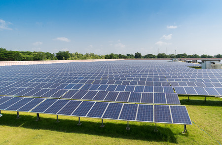 太陽ファームで日光の下で太陽電池パネル 写真素材