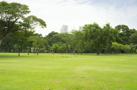 Inner City Park in Bangkok, Thailand photo