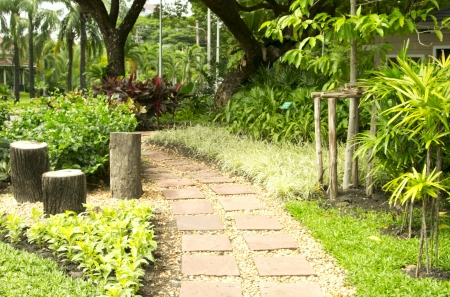 A beautiful nature path through a garden Stock Photo - 14372842