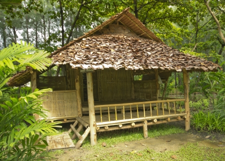 Bamboo house in the jungle Stock Photo - 15055228