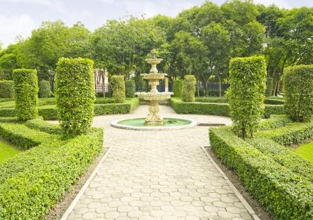show garden: English garden in summer, Lush Green Topiary