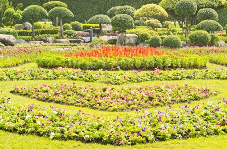 topiary: flower garden and lush green topiary
