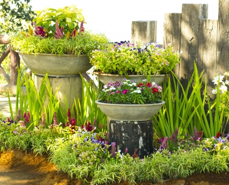 flower pot garden. photo