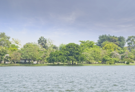 Landscape  The lake in the park  photo