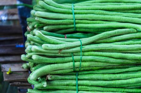 long bean: Yard long bean in market. Stock Photo