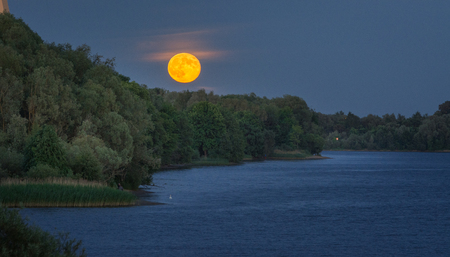 Rising full moon over the tree tops and river Daugava in Riga, Latvia. Impressive huge, orange full moon shining in dark blue sky. Green forest next to river at night time. Foto de archivo - 102907180