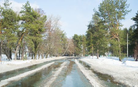 Melting snow outside of the city on the country road. Weather forecast for early spring. Melting snow, difficult road. Early spring in temperate climate. Spring is coming. Sunny spring weather. Beautiful pines on both sides of the road.