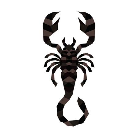 Scorpion creepy astrology sign vector illustration. Danger animal poisonous scorpio zodiac arachnid.