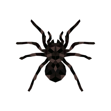 Vector isolated hanging spider for decoration and covering creepy Halloween spiderweb.