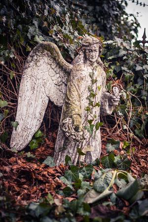 angel cemetery: Angel on the cemetery