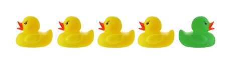 Yellow ducks in a row with green duck going wrong way isolated on white