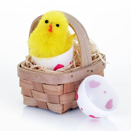 An Easter chick emerging from a toy easter egg