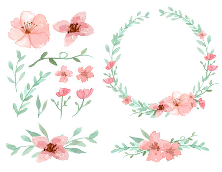 red floral: Set of flowers and leaves vector on white background