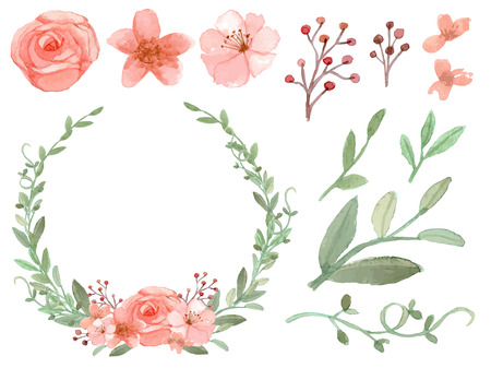 pink flower: Set of flowers and leaves vector on white background