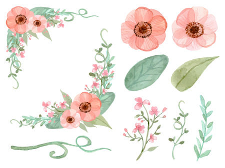vines: Set of flowers and leaves vector on white background