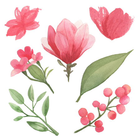 Elements of flowers, leaves and branches traditional drawing and painting by watercolor on white background Stock Photo - 98973294