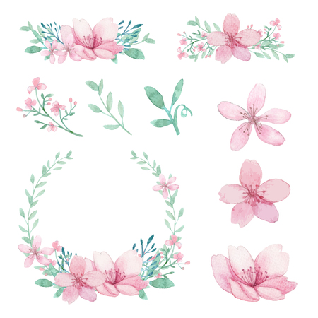 Vector arrangement of flowers, leaves and branches traditional drawing and painting by watercolor on white background