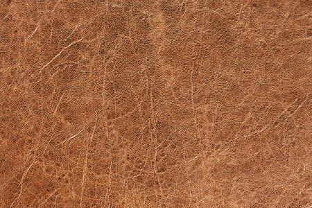 Brown leather texture  A background with a detailed view of brown leather photo