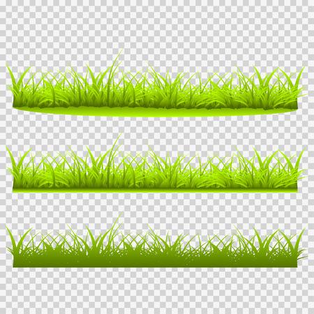 grass blades: Three kinds of grass vector illustration