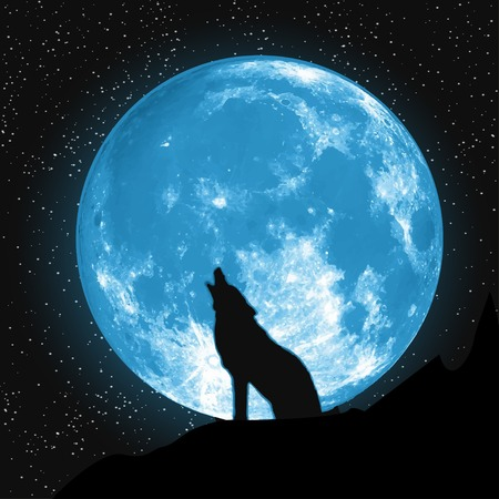 Moon view from the ground. Howling Wolf. Vector