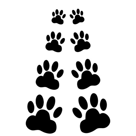 pawprint: Dog paws following illustration on a white  background