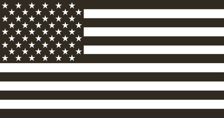 Flag american black and white in  flat design