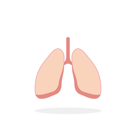 flue: Lungs icon in flat style with shadow, white  background