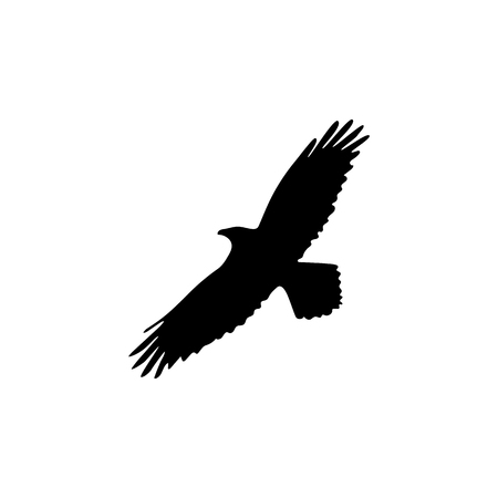 Silhouette of the crow on a white background vector illustration Illustration