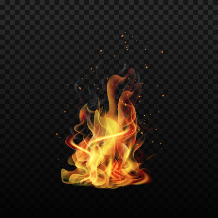 Fire flame. Sparks flame. Isolated background. Realistic fire. Vector