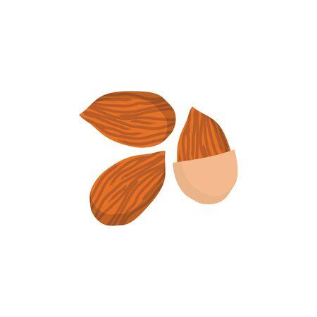 Illustration vectorielle plane de noix d'amande. Icône de noix isolée, nourriture naturelle saine.