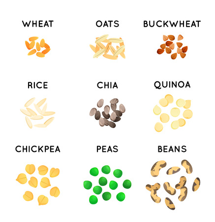 Plant seeds isolated icons. Cereals illustration. Wheat, oat and rice, buckwheat and pea, and chickpea. Chia seeds. Stock Photo
