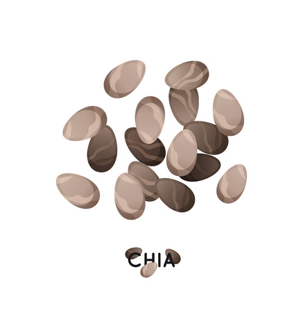 Agro culture chia seeds icon. Cereals chia illustration.