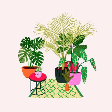 Scandinavian style illustration of house plants in the interior. House indoor plants. Vector design flowers.