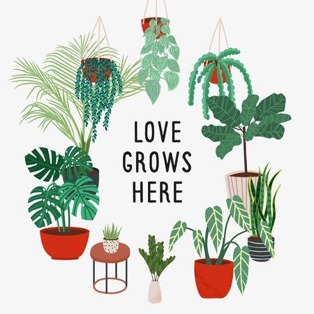Houseplants graphic print in scandinavian style. Plants, interior illustration.