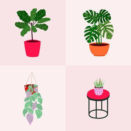 Popular houseplants: monstera, palm, ficus, dracaena. Scandinavian style illustration, modern and elegant floral print for home decor.
