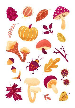 Hand drawn vector set of  beetles, acorn and chestnut. Autumn print. 일러스트