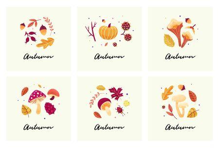 Hand drawn fall season elements: various mushrooms, berries, pumpkin, leaves. Greeting cards wth texture.