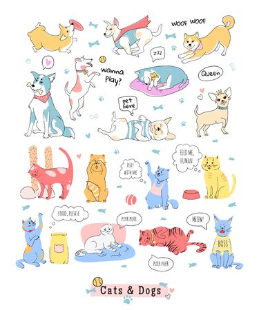 Collection de drôles de chiens et de chats. Doodle icônes d'animaux domestiques. Illustration vectorielle dans le style de ligne. Modèle d'affiche, ensemble d'autocollants.