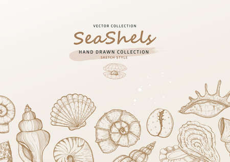 Summer tropical background with seashells and mussels in sketch style. Sea nature theme invitation card Stock Illustratie