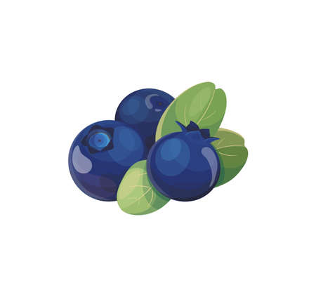 Sweet blue berries isolated on white background. Blueberry icon element for  product , emblems, cover. Stock Illustratie