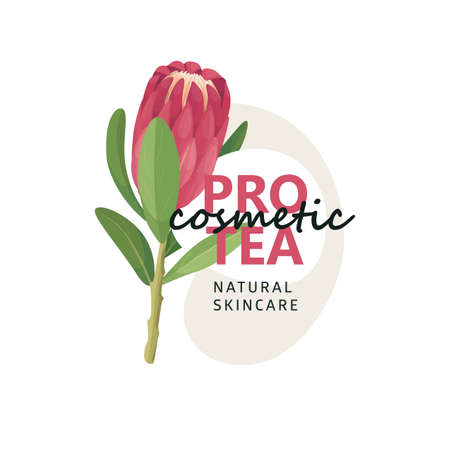 Nature Protea eco   with floral element in cartoon style, logotype concept - frame with copy space for text - emblem for fashion, spa, cosmetic.