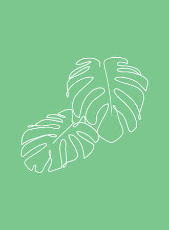 Continuous line plant drawing. Monstera leaves line nature icon,   element for shirt print. Abstract minimal poster illustration.