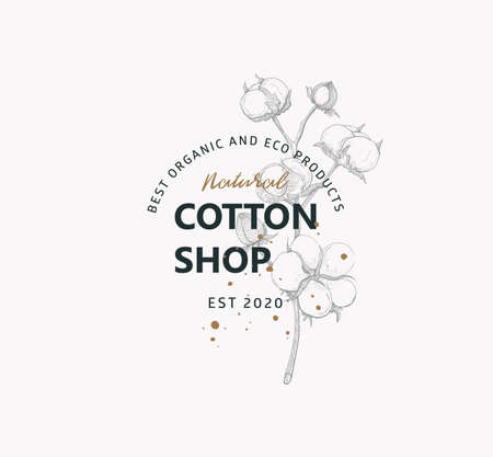 Vector logo of natural shop with image cotton flower on light background.