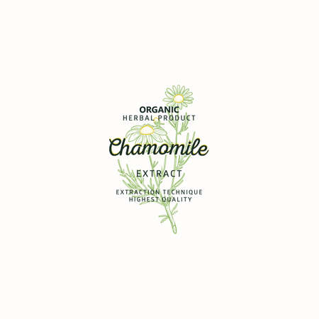 Chamomile symbol natural logo, vector brand identity in line sketch style. Hand drawn nature label.