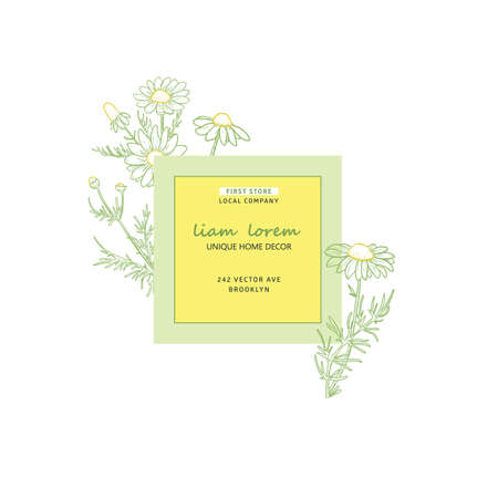 Natural label design, vector brand identity sketch elements for package, badge, card. Chamomile plant branch with flowers. Иллюстрация