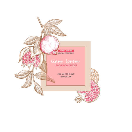 Pomegranate plant branch with fruits. Hand drawn nature label frame with sketch pomegranate fruits. Vectores
